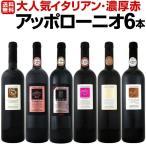 赤ワインセット お買い得 送料無料大人気イタリアンア