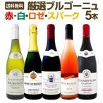 赤 白 ロゼ スパーク 厳選ブルゴーニュワイン5本セット wine set bourgogne rose