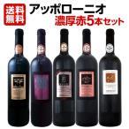 赤ワイン5本セット wine set 大人気イタリアンアッポローニオ濃厚 Italy