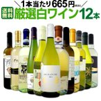 白ワイン12本セット wine set 1本あたり665円 税別 採算度外視の大感謝 厳選