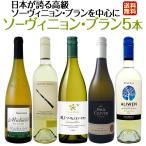 白ワイン 5本セット wine set  日本 日本が誇る高ソーヴィニヨン ブランを 中心に