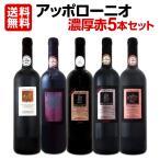 濃厚赤ワイン5本セット wine set 大人気イタリアンアッポローニオ Italy