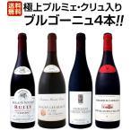 ブルゴーニュ赤ワイン4本セット wine set bourgogne 極 プルミェ クリュ 一級畑 入り 厳選