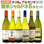 白ワイン セット チリ アルゼンチン