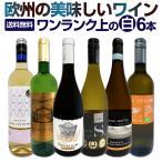 ワインセット 白セット 送料無料 第66弾 辛口白ワイン6本セット wine set