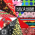 �ϥХϥ� HAV-A-HANK �ϥ֥��ϥ� �Х���ʡڥǥ�����B�ۥϥ� ����ꥫ�� ���饹�� ������ 22����� 55cm x 55cm