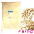 春よ恋 1kg 強力粉 パン用小麦粉 / 北海道産 100% 小麦粉 国産 / 天然酵母 ハルヨコイ はるよこい / パン作り パン ホームベーカリー
