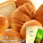強力粉 パン用小麦粉 春よ恋 6kg (1kg×6袋) + 白神こだま酵母 ドライイースト 200g セット / 送料無料 同梱不可 / 北海道産