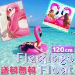 Yahoo!KEDUKAヤフー店【レビューを書いてDM便送料無料】フラミンゴフロート 120cm サイズ 浮き輪 ビーチ プール 旅行 春休み instagram で話題 SNS 海外 海 夏