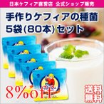 乳酸菌と酵母の手作りケフィアヨーグルトの種菌 オリジナルケフィア 5袋(牛乳500ml用:80包入)