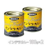 ポイント消化 インデラカレー スタンダード100g 缶入り×2缶 ナイル商会 ご家庭で本格的カレーを簡単に食品添加物 無添加 カレー粉