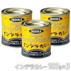 ポイント消化 インデラカレー スタンダード100g 缶入り×3缶 ナイル商会 ご家庭で本格的カレーを簡単に食品添加物 無添加 カレー粉