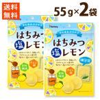 はちみつ 塩 レモン 個包装  2袋セット フルーツ 蜂蜜 ハチミツ スライス 食物繊維 熱中症 送料無料 ポイント消化