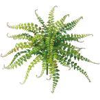 人工観葉植物ワイルドグラスファン全長35cm2本セットボストンファーンタマシダネフロレピス西洋タマシダ造花リーフ花材