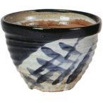 日本製 植木鉢 染付中深 6号 全高12.5cm×幅18cm 信楽焼 しがらきやき 陶器製 陶器鉢 焼き物 底穴あり プランター ポット