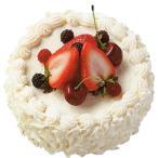 【食品サンプル】ホワイトチョコ・フルーツケーキ・ホール・直径15cm(洋菓子/スイーツ/デザート/ケーキ)(フェイクフード/食品模型/オブジェ/ディスプレイ)