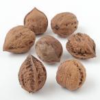 ドライフラワー おにくるみ ナチュラル 直径3〜4cm 24個セット(1袋8個×3袋)(天然素材 自然素材 花材)(クルミ 胡桃)(アレンジ)