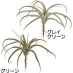 空間を彩るオシャレな多肉植物。ティランジアの人工観葉植物♪