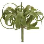 人工観葉植物・キセログラフィカ・S・全長15cm・2本セット