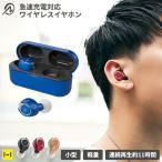 イヤホン ワイヤレスイヤホン Bluetooth5.1対応 IP54 急速充電対応 完全ワイヤレスイヤホン M-SOUNDS MS-TW11