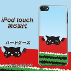 iPod touch6 IPODTOUCH6 ハードケース カバ