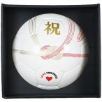 Celebration フットサルボール 【SFIDA|スフィーダ】フットサルボール4号球bsf-cb02