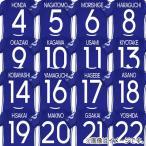 ショッピング出場記念 ジュニア サッカー日本代表 ホーム メモリアルユニフォーム ネーム&ナンバーマーキングセット jfa17j-mark-20th