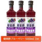 SSB 美酢(ミチョ)  飲むお酢 健美酢 ブルーベリー 500ml 3本 健康酢 飲めるお酢