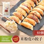 米粉の皮で包んだギョーザ【肉なし】60個セット