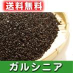 送料無料 インド産 100% ガルシニア茶(300g)