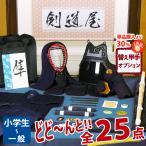 剣道防具 入門セット 6ミリ刺し「はやぶさJFP」 ●印伝風面乳革「青・トンボ」プレゼント