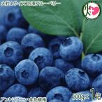 「森のサファイア」大粒 Lサイズ 冷凍 ブルーベリー 500g×1P 大粒 完熟ジューシー 糖度13〜15度 条件付き送料無料