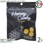 ギフト Honey Candy プロポリス 25g×2P カルナ 福岡 国産アカシア蜜使用 着色料・香料不使用 手作りあめ はちみつ プロポリス原液 送料無料
