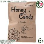 ギフト Honey Candy プロポリス 70g×6P カルナ 福岡 国産アカシア蜜使用 着色料・香料不使用 手作りあめ はちみつ プロポリス原液 送料無料