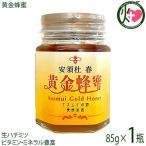 黄金蜂蜜 85g×1瓶 ごがねはちみつ 蜜源 黄金森 安須日杜 黄金色の春蜂蜜 沖縄 人気 自然食品 蜜 生ハチミツ オーガニック  送料無料