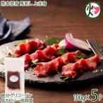 熊本肥育 馬刺し 上赤身 100g×5P フジチク タレ・生姜付き 熊本県 土産 人気 馬肉 刺身 ご自宅用に 贈り物に 送料無料