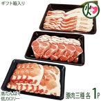 ギフト 山原豚(琉美豚) 白豚 ロース 肩ロース バラ しゃぶしゃぶ用 各500g フレッシュミートがなは 沖縄 豚肉 アク出にくい 条件付き送料無料