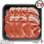やんばる島豚あぐー 黒豚 肩ロース しゃぶしゃぶ用 500g フレッシュミートがなは 沖縄 土産 アグー 貴重 肉 ビタミンB1 低コレステロール 条件付き送料無料
