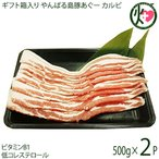 ギフト やんばる島豚あぐー 黒豚 カルビ(バラ肉・三枚肉) 焼肉用 ギフト 500g×2P フレッシュミートがなは 沖縄 アグー 貴重 ビタミンB1豊富 条件付き送料無料