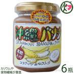 手作りジャム バナナ ココナッツミルク 黒糖入り 140g×6瓶 ぎのざジャム 沖縄 フルーツ 珍しい 林修の今でしょ講座 黒糖 ミネラル ビタミン 送料無料