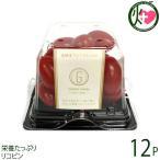 GINZA FARM 高糖度プレミアムトマト×12P パック納品 新鮮 高級 甘いとまと 産地直送  条件付き送料無料