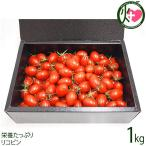 お歳暮 ギフト GINZA FARM 高糖度プレミアムトマト 1kg ギフト箱入り 新鮮 高級 甘いとまと 産地直送  条件付き送料無料
