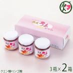 梅ジャム 200g×3瓶入り×2箱 濱田 和歌山 土産 人気 調味料 紀州特産の南高梅を使用 クエン酸 リンゴ酸 条件付き送料無料