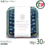 冷凍ブルーベリー100g×30P 無農薬栽培 安心 安全  条件付き送料無料