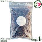 冷凍ブルーベリー500g×1P 無農薬栽培 安心 安全  条件付き送料無料