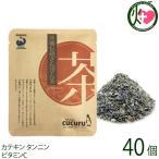 ふたもり茶房 さんぴん茶 ティーパック (2g×2包)×40P 石垣島ヘルシーバンク 沖縄 土産 健康茶 送料無料