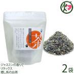 ふたもり茶房 さんぴん茶 ティーパック (2g×16包)×2P 石垣島ヘルシーバンク 沖縄 土産 健康茶 送料無料