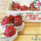 ドラゴンフルーツ 2kg(4玉〜6玉) ピタヤ  条件付き送料無料