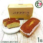 バナナケーキ 小 (箱入)×1箱 1000円ポッキリ 送料無料 海外にもファンのいる人気商品