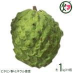 期間限定・数量限定 アテモヤ (アフリカン プライド) 約1kg 小粒 (4〜6個) 送料無料 超稀少 沖縄 フルーツ
